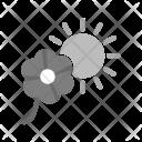 Flower Sunlight Icon