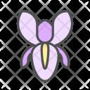Flower Iris Blossom Icon