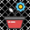 Pot Plant Daisy Icon