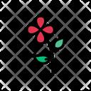 Flower Rose Park Icon