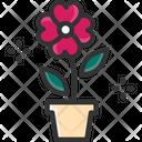M Flower Flower Plant Flower Pot Icon