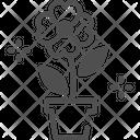 M Flower Icon