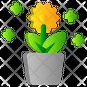 Garden Pot Spring Icon