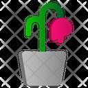 Flower Hot Summer Icon