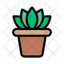 Plant Flower Green Icon