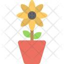 Sunflower Plant Blossom Icon