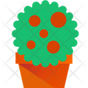 Flower Plant Green Plant Pot Icon