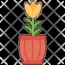 Flower Pot Pot Plant Plant Icon