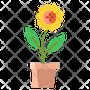 Apot Flower Pot Flower Icon
