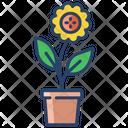 Apot Icon