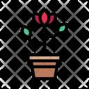 Flower Plant Rose Icon