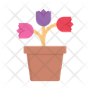 Flower Pot Rose Pot Flower Icon