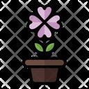 Flower Pot Flower Pot Icon