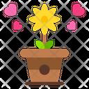 Flower Pot Flowers Pot Icon