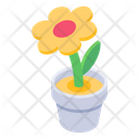 Potted Plant Flower Pot Flower Icon