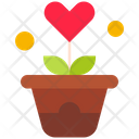 Flower Pot Flower Heart Icon