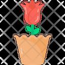 Flower Pot Planter Rose Pot Icon