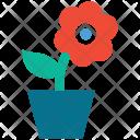 Flower Pot Nature Icon
