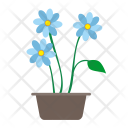 Home Plant Grow Icon