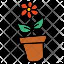 Flower Pot Vase Icon