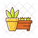 Flower Pots And Flower Beds Icon