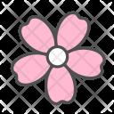 Flower Sakura Blossom Icon