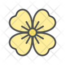Flower Sundrop Primrose Icon
