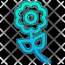 Flower 3 Icon