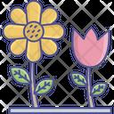 Daisy Flowering Plants Plants Icon