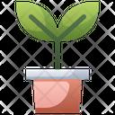 Flowerpot Icon