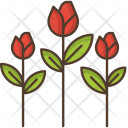 Flowers Rose Nature Icon