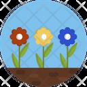 Flowers Flower Garden Icon