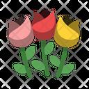 Bouquet Compassion Flower Icon
