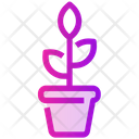Flowers Pot Icon