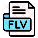 Flv File Type File Format Icon