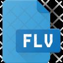 Flv File Video Icon