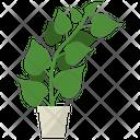 Fo-ti Root Plant Icon