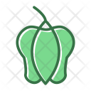 Food Pepper Sweet Icon