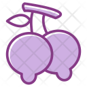 Food Fruit Mango Icon