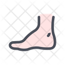 Foot Leg Shank Icon
