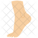 Foot Human Foot Body Part Icon