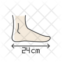Foot Length Icon