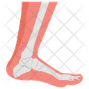 Foot Medical Showing Icon