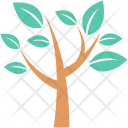 Forest Plant Tree Icon
