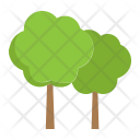 Forest Tree Nature Icon