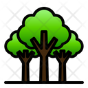 Rain Forest Tropical Nature Icon