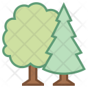 Forest Tree Icon