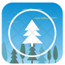 Tree Fir Nature Icon