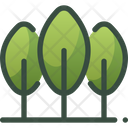 Nature Forest Tree Icon