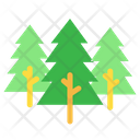 Forest Parks Pine Icon